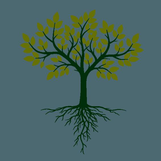 arbre-c2ea